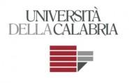 logo-Unical-Università-della-Calabria-300x195